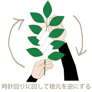 玉串奉奠03.png