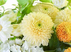 喪主になる前に知っ得、供花のマメ知識