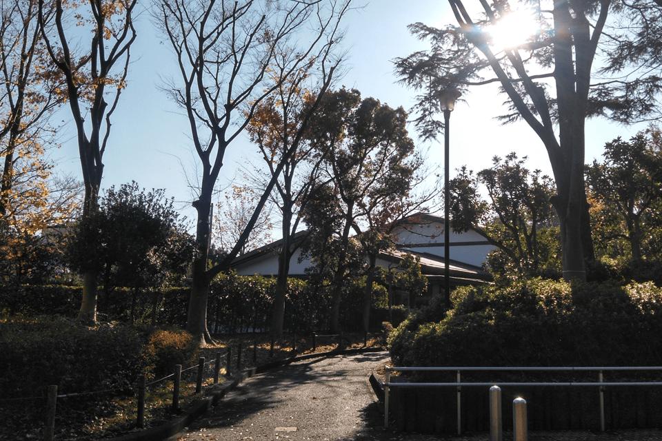 平和の森公園から見た斎場